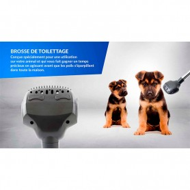 SET DE 2 BROSSES UNIVERSELLES PET MODELE BP2 DE HARPER