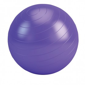 BALLON DE FITNESS 65CM DE DIAMETRE FIT-BALL DE FITFORLIFE